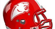 Burton panther helmet