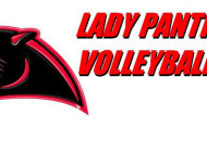 BURTON PANTHER VOLLEYBALL LOGO