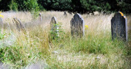 old cemetery feature