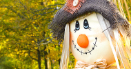 scarecrow feature