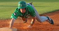 Cub Baseball feature1