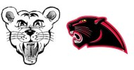 ICON CUBS PANTHERS