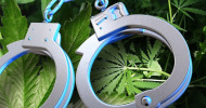 drug possession arrest feature