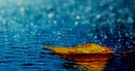 rain flooding feature