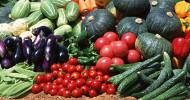 garden vegetables feature