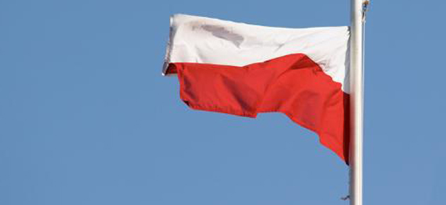 POLISH FLAG FEATURE