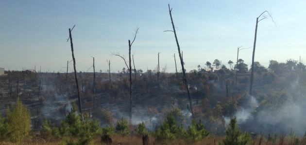 HIDDEN PINES FIRE