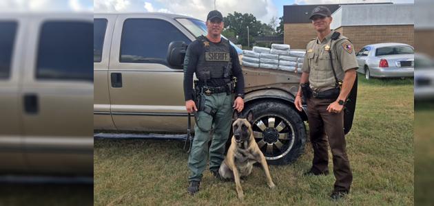 drug arrest Lobos feature