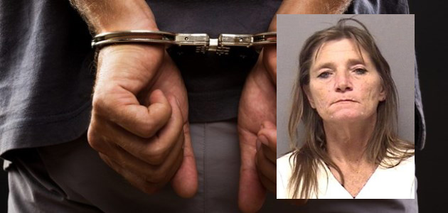 Photo of WOMAN ARRESTED FOR WALMART THEFT