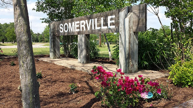 Photo of SOMERVILLE WINS GOVERNOR'S AWARD