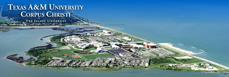 Am Corpus Christi >> Ground Broken For Research Expansion At A M Corpus Christi