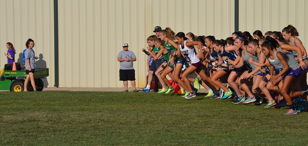 Photo of CUBS AND CUBETTES RUN THEIR WAY TO STATE